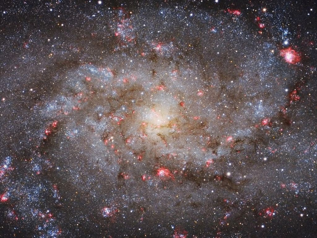 M33 Core by Michael van Doorn (Netherlands)