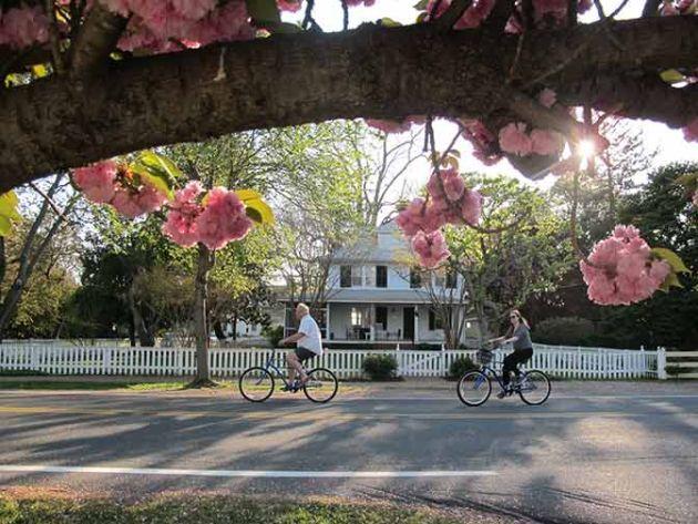 Passeggiare o fare bicicletta per le cittadine della baia è un altro modo per conoscere le bellezze locali .