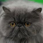 © webphotographeer / istockphoto.com