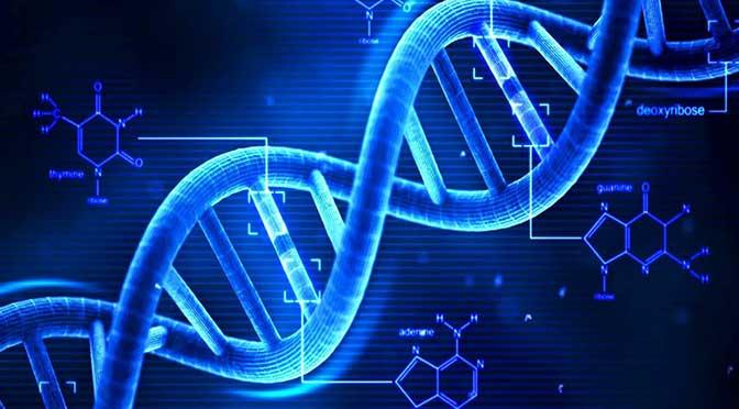 La biologia di nuova generazione: quantitativa e computazionale