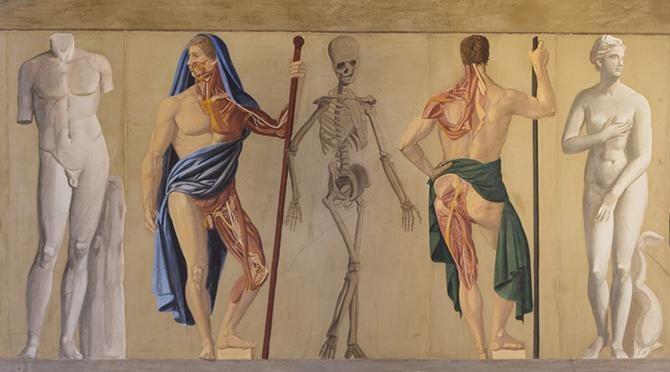 Le novità del Museo di Storia della Medicina di Padova