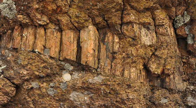 """La roccia pseudotachilite: ecco la """"Stele di Rosetta"""" della geologia"""