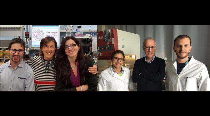 Tumori senza cura: l'uso delle nanoparticelle apre nuove prospettive